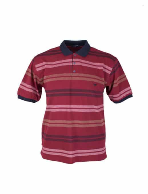 Ριγε ανδρική μπλούζα plus size κωδ 733-8327