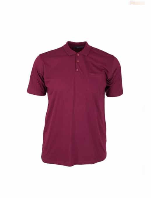 Ανδρική μπλούζα plus size κωδ 731-7100-2